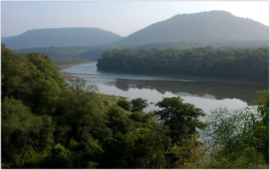 Biggest Forest in India