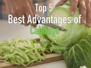 5 Best Health Advantages of Cabbage