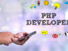 Professional PHP Developer